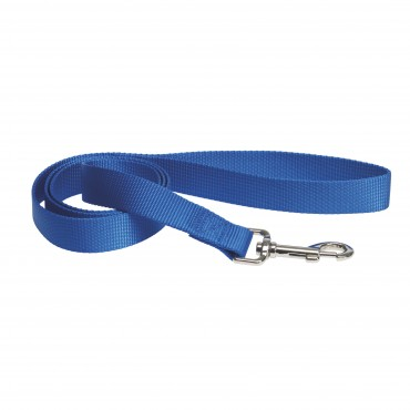 Laisse Simple en sangle nylon - Bleu